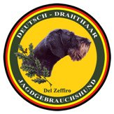 drahthaarzeffiro.it Logo